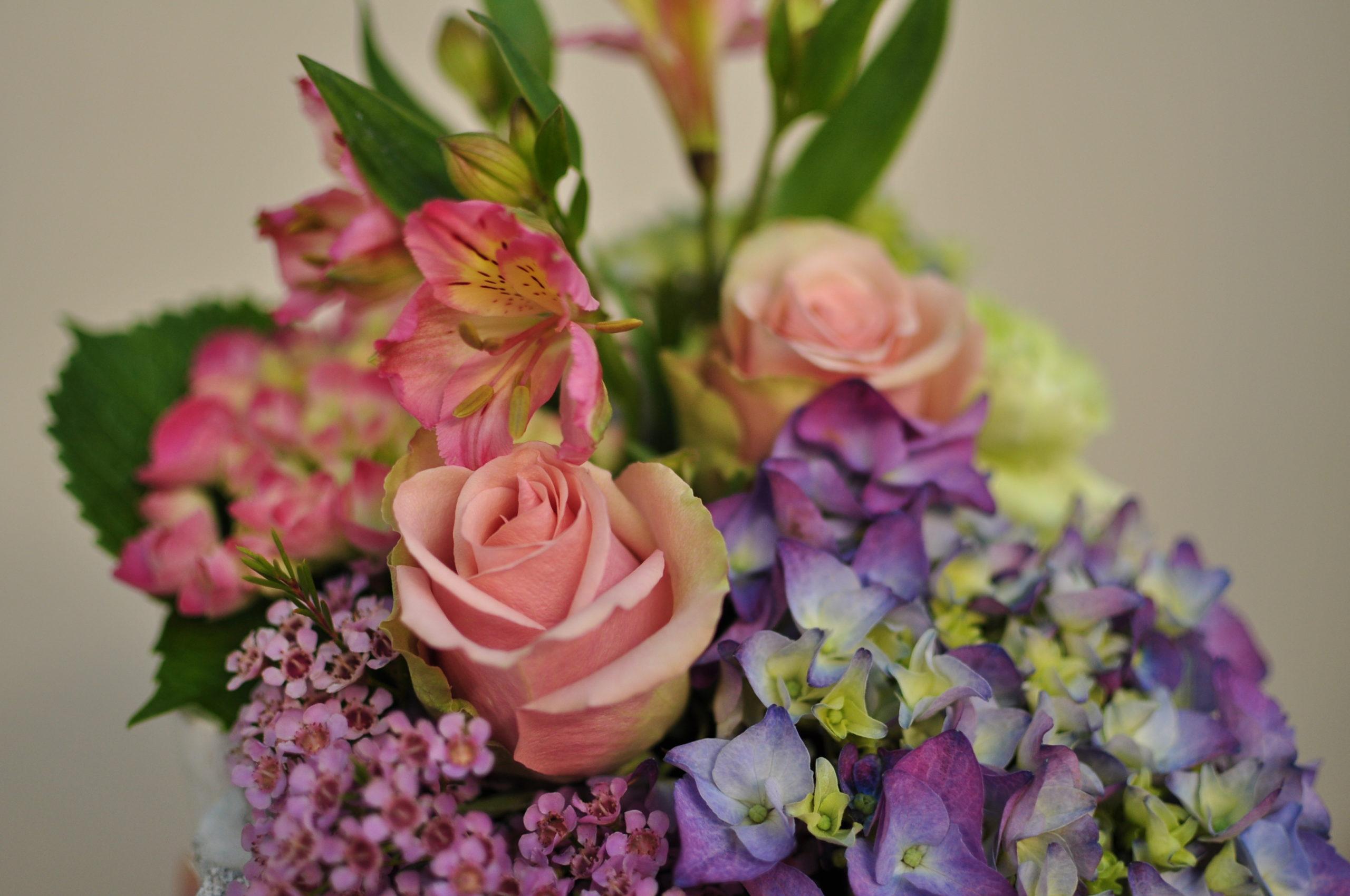 bouquet e fiori recisi