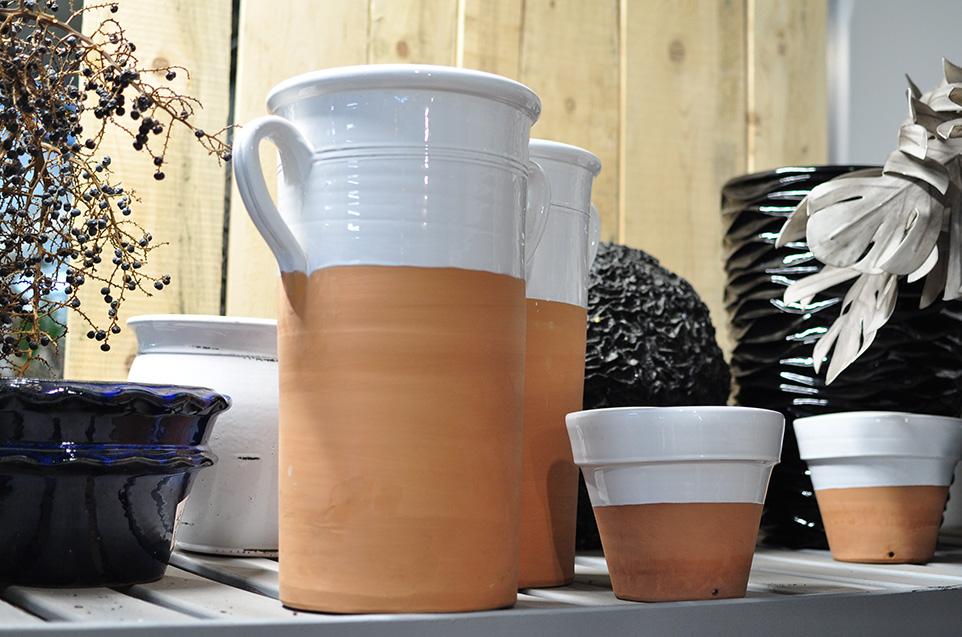 piantare in vaso vivaio volta