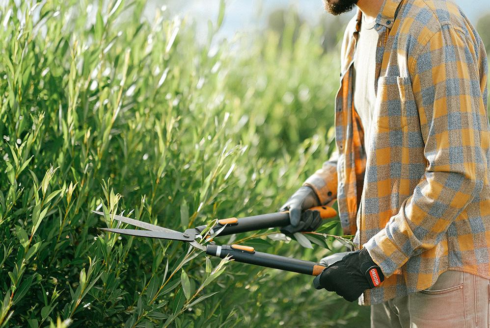 prodotti e servizi per il giardinaggio