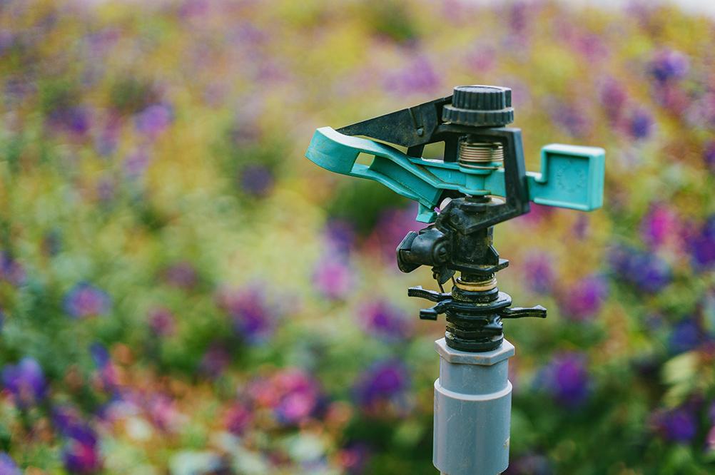 irrigazione piante e fiori