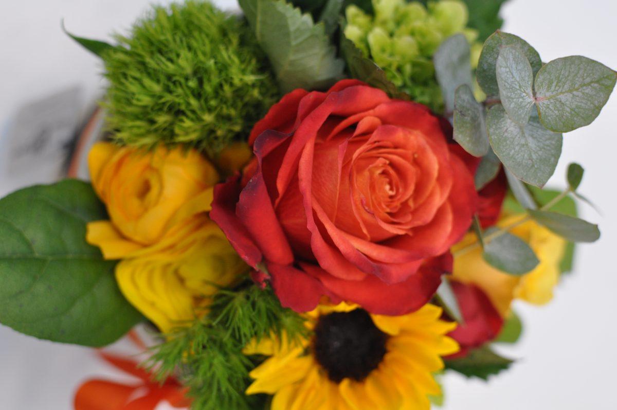 consegna domicilio piante e fiori brescia